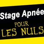 Stage Apnée pour les Nuls